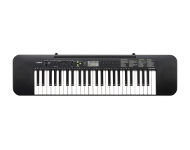 Casio CTK-240 Синтезатор, 49 клавиш, адаптер AD-E95100 входит в коплект